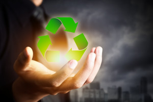 Green Practices for your Small Business