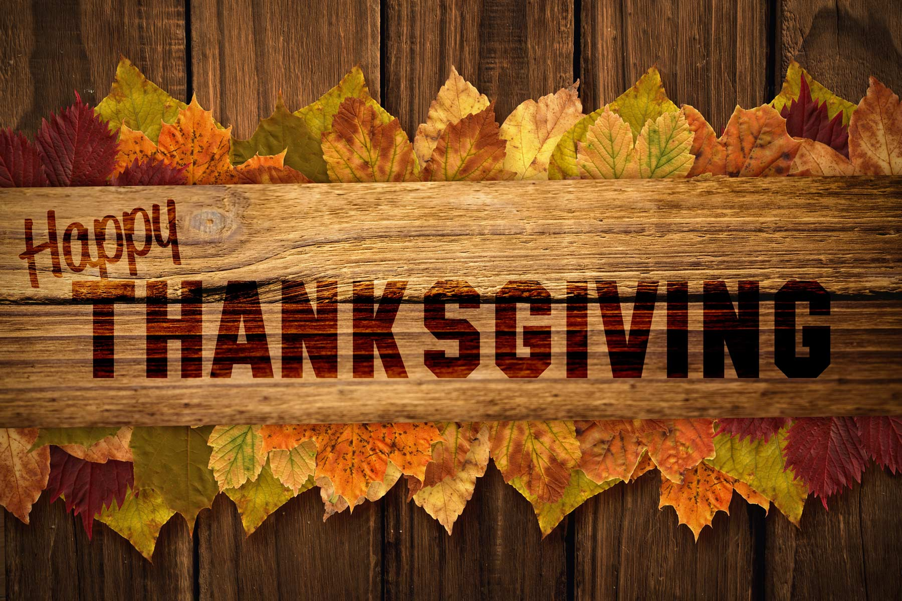 How You Can Give Back This Thanksgiving