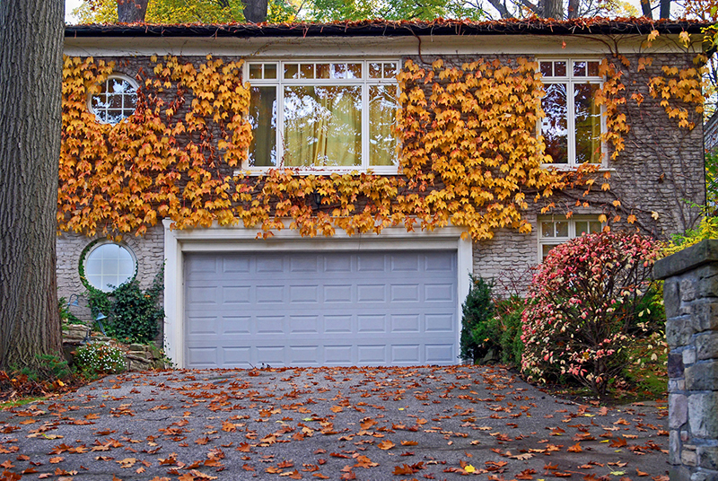 Fall Checklist to Avoid Insurance Claims