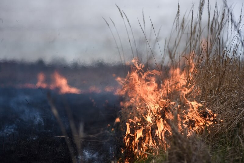 Will My Homeowners Insurance Cover Wildfire Damage